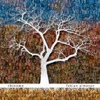 FABIAN ALMAZAN Rhizome album cover