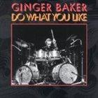 GINGER BAKER Do What You Like album cover