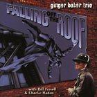 GINGER BAKER Falling Off The Roof album cover