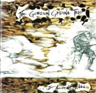 GORDON GRDINA The Gordon Grdina Trio : ...If Accident Will album cover
