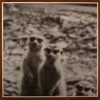HANS REICHEL Erdmännchen (with Achim Knispel) album cover