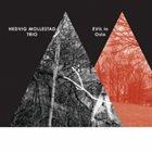 HEDVIG MOLLESTAD Hedvig Mollestad Trio : Evil In Oslo album cover