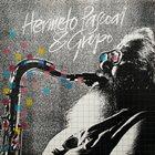 HERMETO PASCOAL Hermeto Pascoal & Grupo (aka The Legendary Improviser) album cover