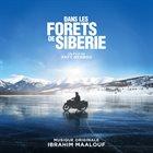 IBRAHIM MAALOUF Dans Les Forets De Siberie album cover