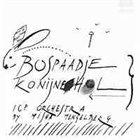 ICP ORCHESTRA Bospaadje Konijnehol I album cover