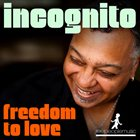 INCOGNITO Freedom To Love  (remixes) album cover