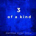 JØRGEN EMBORG Jørgen Emborg, Emil Hess, Søren Lee : 3 Of A Kind album cover