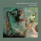 JAMES BRANDON LEWIS James Brandon Lewis And Chad Taylor : Radiant Imprints album cover