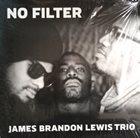 JAMES BRANDON LEWIS No Filter album cover