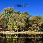 JERRY KALAF Freedom album cover