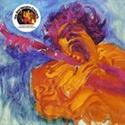 JIMI HENDRIX The Jimi Hendrix Concerts album cover