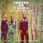 JIMI TENOR Tenors Of Kalma : Electric Willow album cover