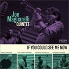 JOE MAGNARELLI If You Could See Me Now album cover