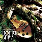 JOEL HARRISON Mother Stump album cover