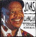JONAS GWANGWA A Temporary Inconvenience album cover
