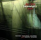 JURE PUKL Serendipity album cover