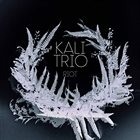 KALI TRIO Riot album cover