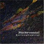 KEVIN KASTNING Kastning Siegfried:  Bichromial album cover