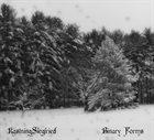 KEVIN KASTNING Kastning Siegfried:  Binary Forms album cover
