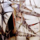 KRIS DAVIS Rye Eclipse album cover