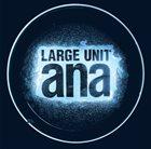 LARGE UNIT Ana album cover
