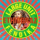 LARGE UNIT Ethiobraz album cover