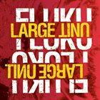 LARGE UNIT Fluku album cover