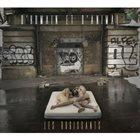 LES RUGISSANTS D'humain Et D'Animal album cover