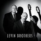 LEVIN BROTHERS Levin Brothers album cover