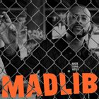 MADLIB Rock Konducta Pt. 1 & 2 album cover
