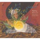 MAKOTO OZONE The Trio : New Spirit album cover
