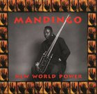 MANDINGO (FODAY MUSA SUSO) New World Power album cover