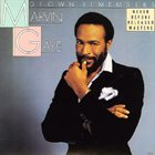 MARVIN GAYE Motown Remembers Marvin Gaye album cover