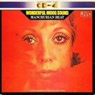 MASAHIKO SATOH 佐藤允彦 M. Sato And 1864 Cotton Field Rock Band : Wonderful Moog Sound album cover