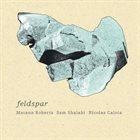 MATANA ROBERTS Matana Roberts & Sam Shalabi & Nicolas Caloia : Feldspar album cover