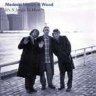 MEDESKI MARTIN AND WOOD It's a Jungle in Here album cover