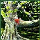 MEREDITH D' AMBROSIO Silent Passion album cover