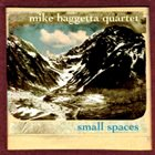 MIKE BAGGETTA Small Spaces album cover