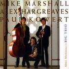 MIKE MARSHALL Mike Marshall's Big Trio album cover