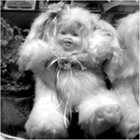 MOTHGUTS Mothguts With Herb Robertson : 08854 album cover