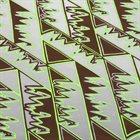NATURAL INFORMATION SOCIETY (JOSHUA ABRAMS NATURAL INFORMATION SOCIETY) Mandatory Reality album cover
