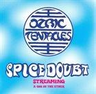 OZRIC TENTACLES Spice Doubt album cover