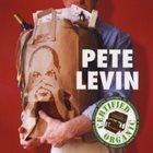 PETE LEVIN Certified Organic album cover