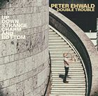 PETER EHWALD Peter Ehwald Double Trouble : Up, Down, Strange, Charm And Bottom album cover