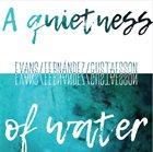 PETER EVANS Peter Evans, Agusti Fernandez, Mats Gustafsson : A Quietness Of Water album cover