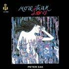 PETER ZAK More Than Love album cover