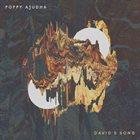 POPPY AJUDHA David's Song album cover