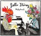 RICARDO GALLO Gallo/Flórez duo : Meleyólamente album cover