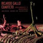 RICARDO GALLO Urdimbres y Maranas album cover