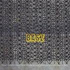 ROBERT LANDFERMANN Robert Landfermann, Dieter Manderscheid, Sebastian Gramss, Joscha Oetz : BASZ album cover
